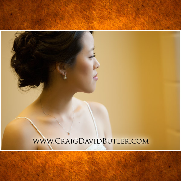 Ann Arbor Wedding Photography Michigan, Craig David Butler chang03