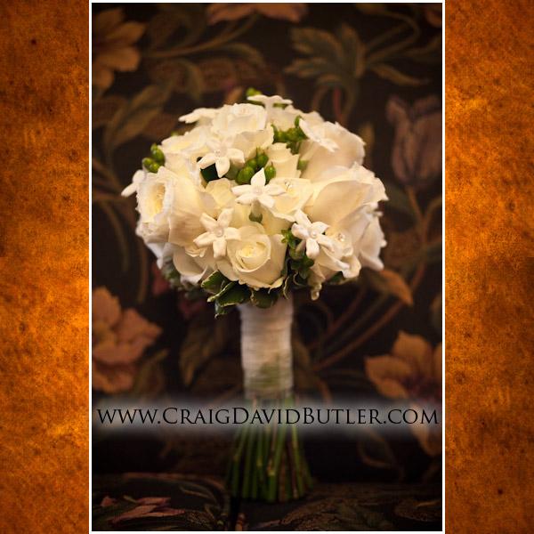 Michigan Wedding Photography, Lansing MSU videography,  Craig david Butler Studios, Troy01