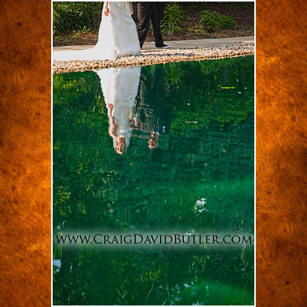 Southgate Wedding Photography, Michigan Grecian Center, Wedding Picture Videography, Cos6