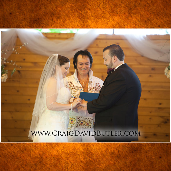 Southgate Wedding Photography, Michigan Grecian Center, Wedding Picture Videography, Cos9