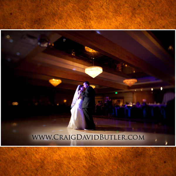 Southgate Wedding Photography, Michigan Grecian Center, Wedding Picture Videography, Cos9a