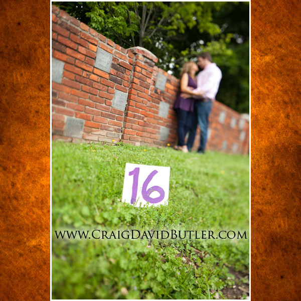 Wedding Engagement Photography, Northville Michigan Wedding,  Craig David Butler Studios, Bran3