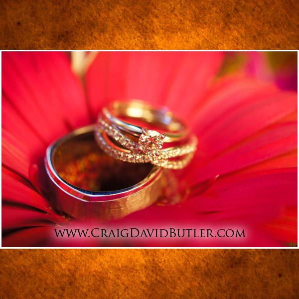 Petruzzellos wedding photography troy michigan, National Shrine Wedding, Craig David Butler Studios 02
