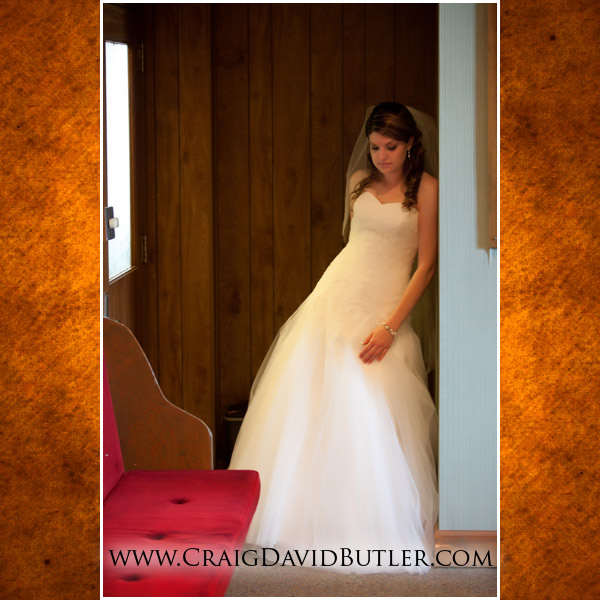 Michigan Wedding Photographer, Detroit Colony Club, Craig David Butler Studios, 05