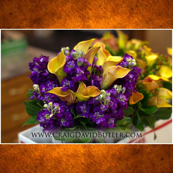 Detroit Michigan Wedding Photographs, Same Day Edit, Royalty House Warren, Craig David Butler,01