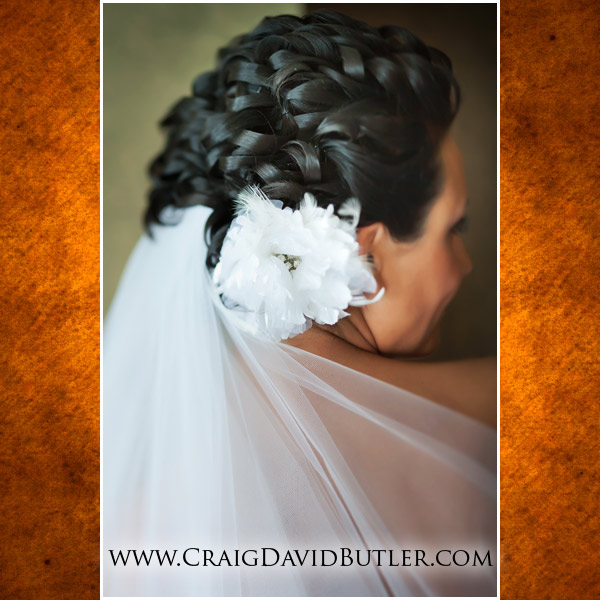Detroit Yacht Club Wedding Picture, Craig David Butler Studios Michigan - 008