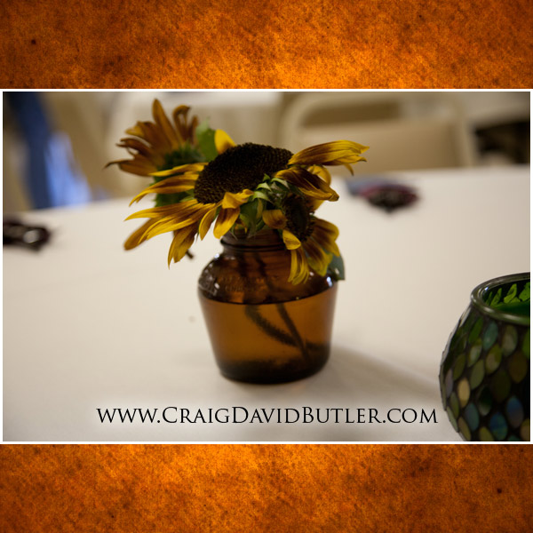 Michigan wedding photographer, Michigan Country Wedding Eagle, Craig David Butler, 12