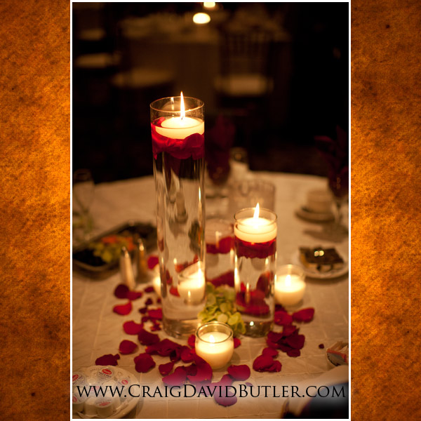 Michigan Wedding Photographer Troy Petruzzellos, Craig David Butler, 14