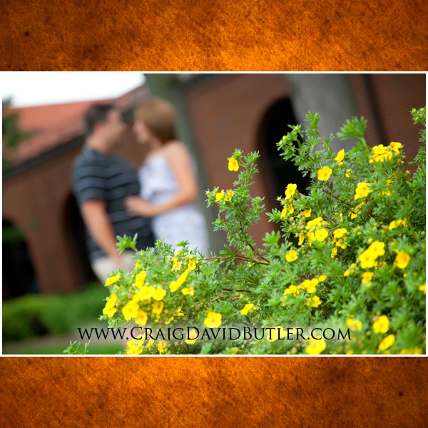 Plymouth Michigan Wedding Engagement Photography, St Johns, Craig David Butler Studios, 03