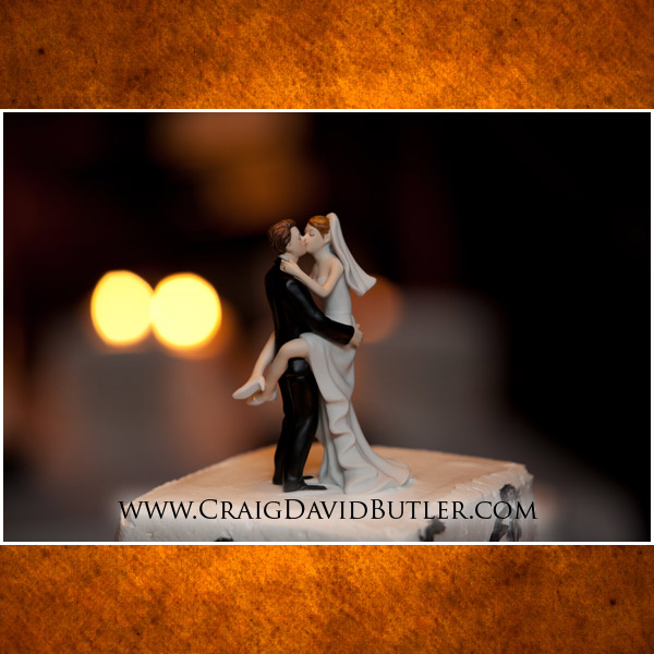 Wedding Mill Race Village Northville Pictures Michigan, Craig David Butler Studios, 18