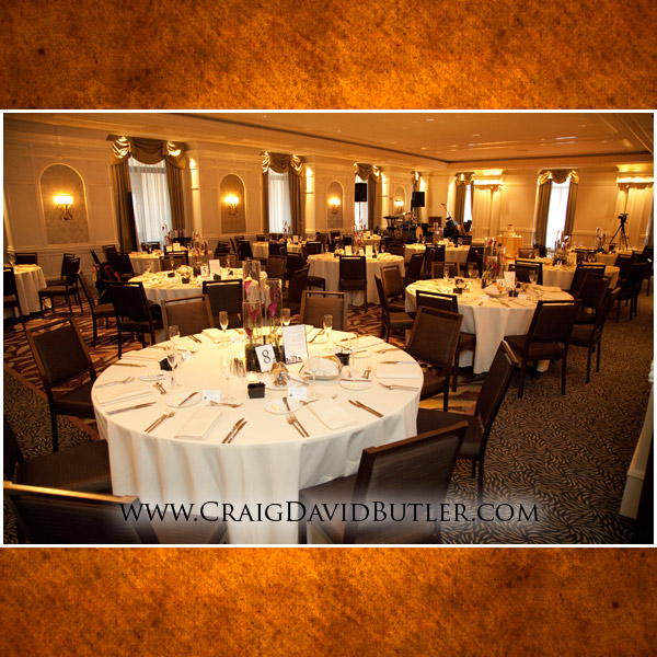Detroit Michigan Wedding Photographer, Westin Book Cadillac, Craig David Butler Studios, 16