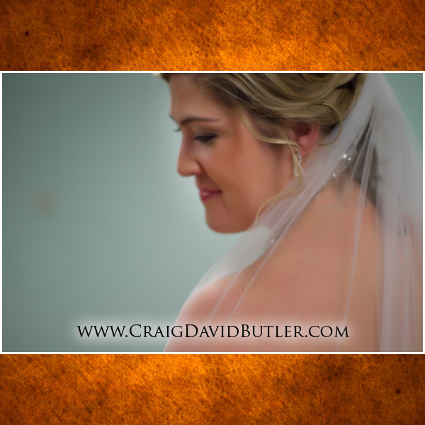 Michigan Wedding Photographer Plymouth, Meeting House Grand Ballroom, Craig David Butler Studios, 01