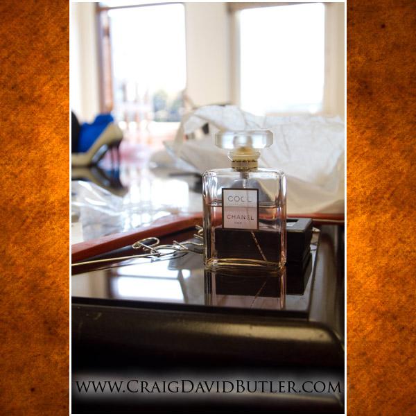 Plymouth Michigan Wedding Photographer, The Inn at St. John's, Same Day Edit, Craig David Butler, 03