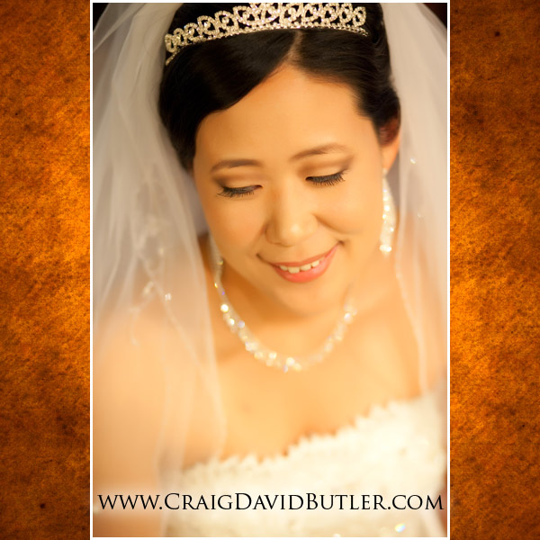 Plymouth Michigan Wedding Photographer, The Inn at St. John's, Same Day Edit, Craig David Butler, 05