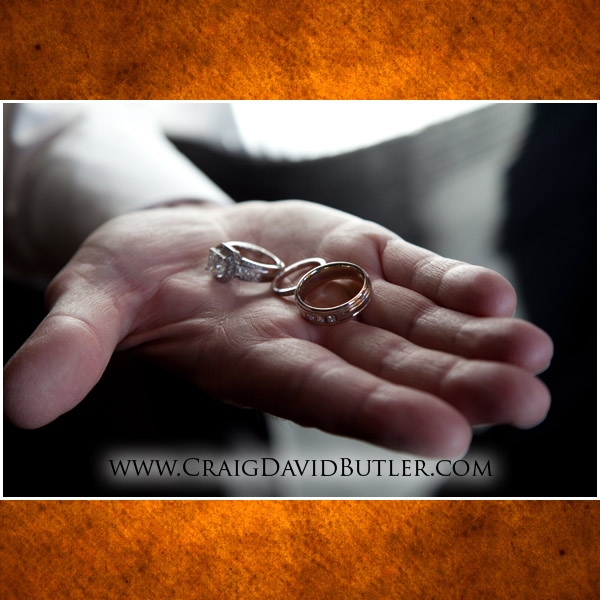 The Inn at St. John's Plymouth Wedding Photography Michigan, Craig David Butler Studios, 04