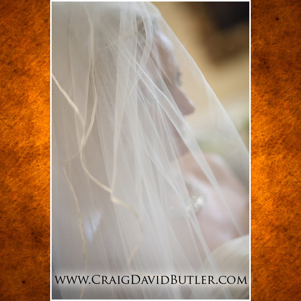 Grosse-Pointe-Wedding-Photography-Michigan, Craig David Butler Studios, Northville, War Memorial