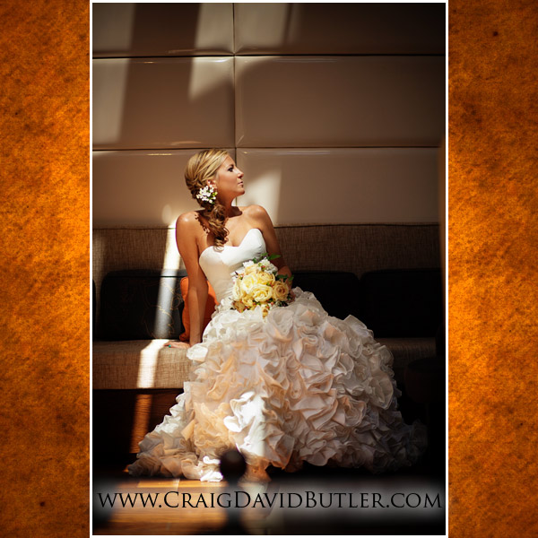 -Michigan Wedding Pictures, Craig David Butler Studios, Novi Wedding