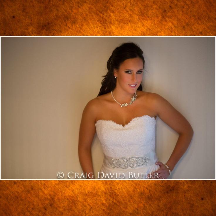 Bay Point Wedding Photography Michigan, Craig David Butler Studios Northville 04
