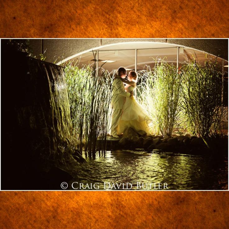 Michigan-Wedding-Photograph-Southfield-Adler01