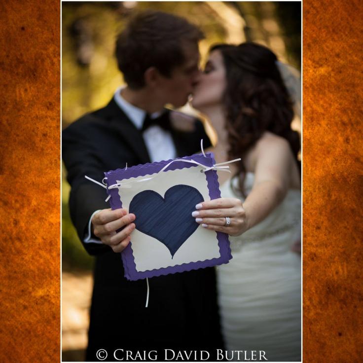 Michigan-Wedding-Photograph-Wellers-Saline-Grunstrom