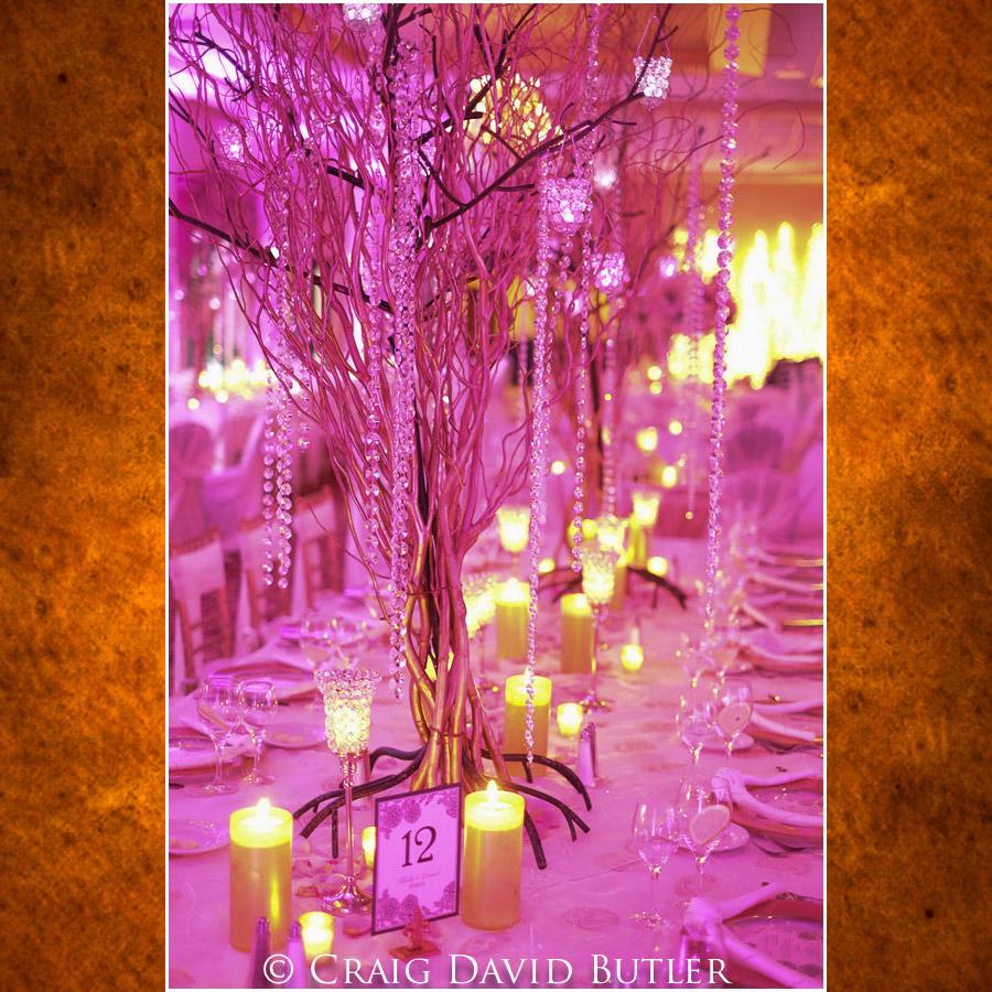 Michigan Wedding Photography Grosse Ile Crystal Gardens Craig David Butler Studios