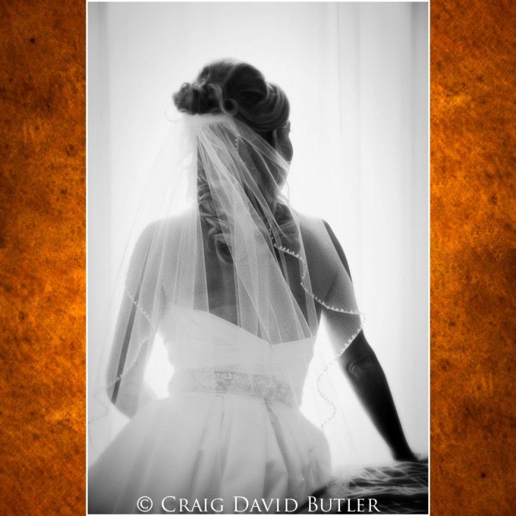 Rochester-Michigan-WeddingPhotos-, Craig David Butler Studios, Northville Wedding