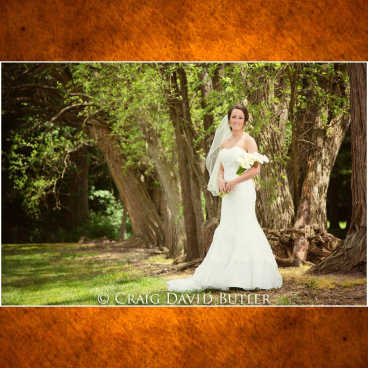 Wedding-Photos-Craig-David-Butler