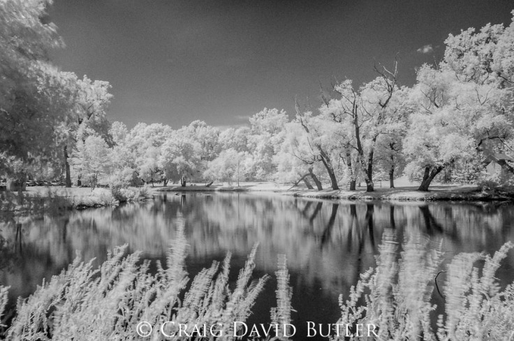 Infrared Photography Detroit Michigan - Northville