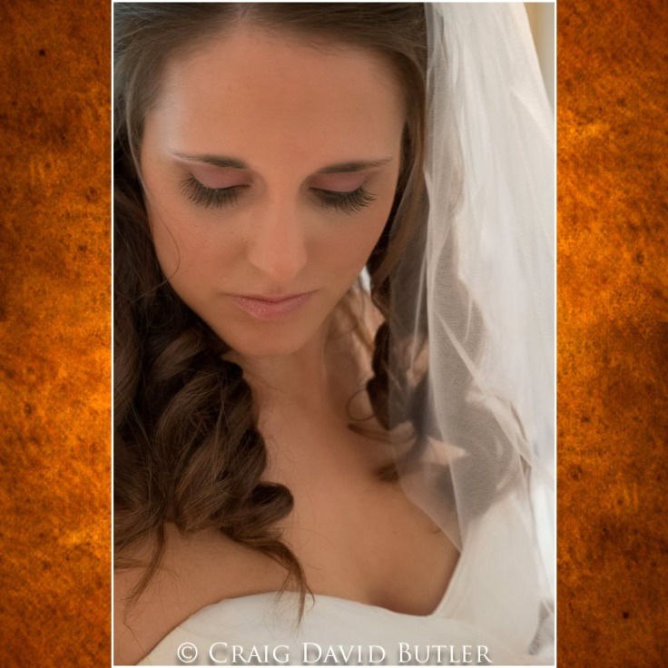 Michigan-Wedding-Pictures-Detroit, Craig David Butler Studios Northville