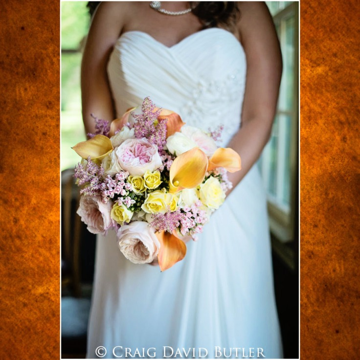 Michigan-Wedding-pictures-Wellers-Saline-1031