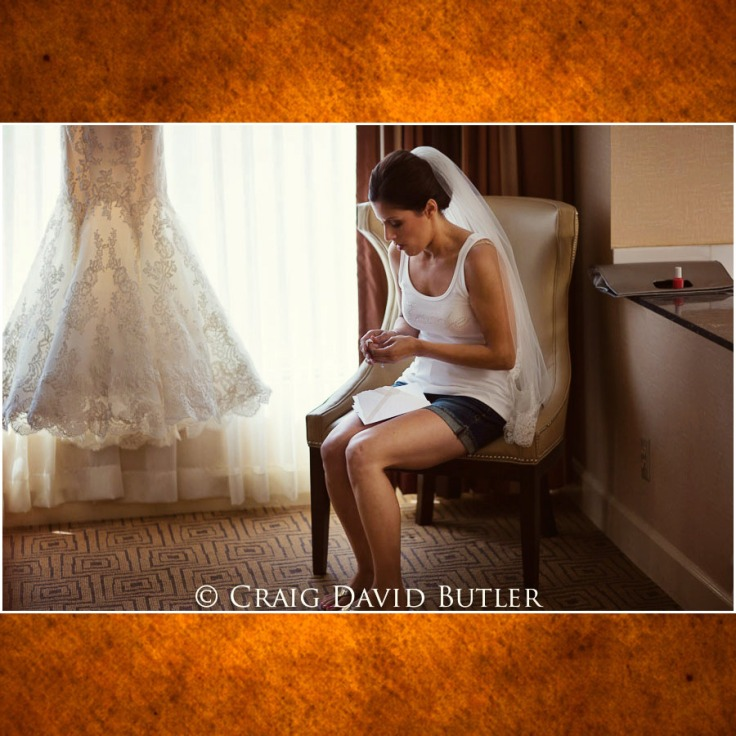 Detroit Wedding Pictures -