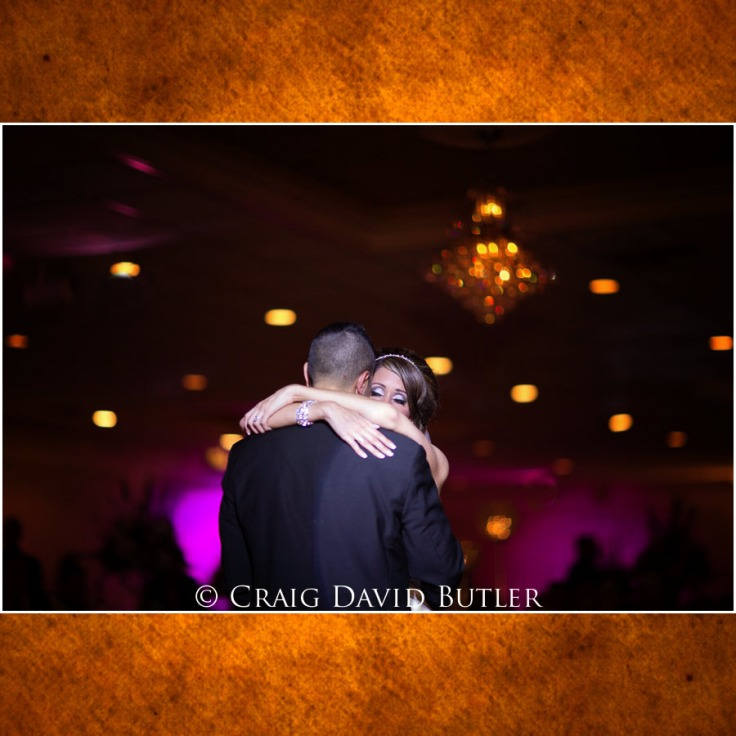 Michigan-Wedding-Pictures-Detroit-11081