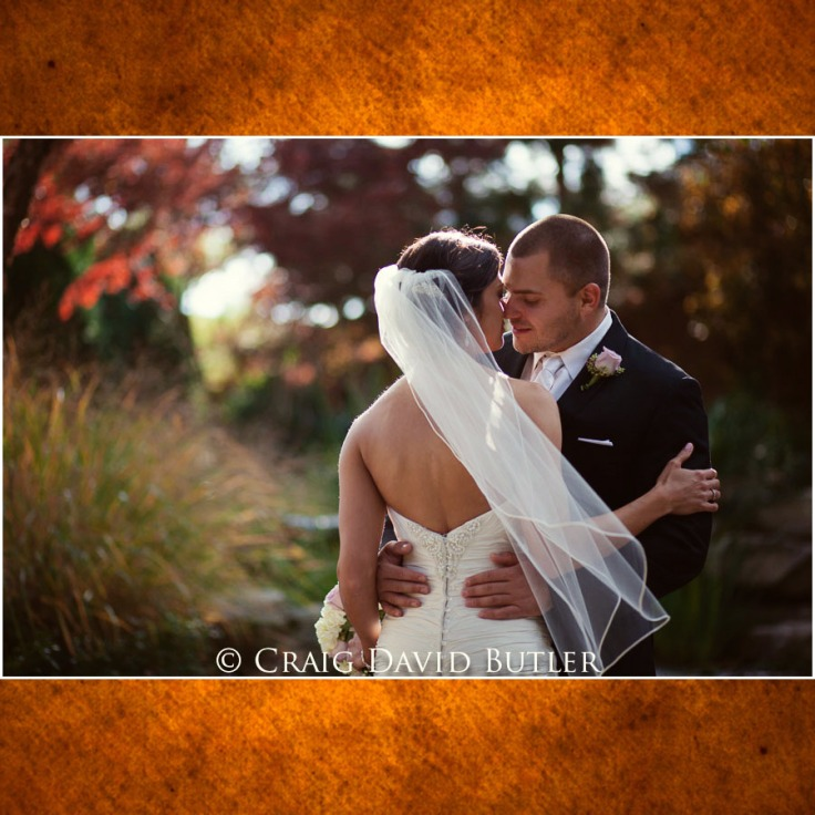 StJohns-Plymouth-Michigan-Wedding-Photos-1001