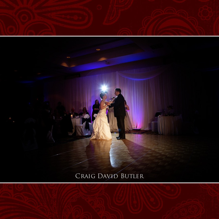 Wedding Photography Detroit Michigan Livonia, Craig David Butler