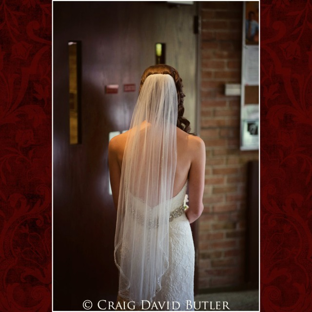 vFarmington Wedding Pictures, Craig David Butler Studios Plymouth Michigan