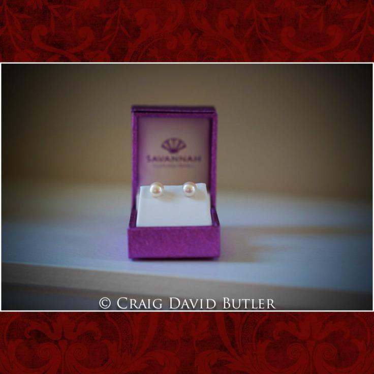 DexterMichigan-Wedding-Photos-CDBStudios-1004