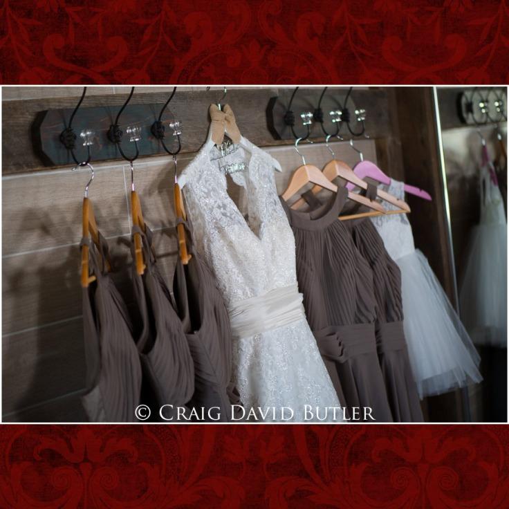 DexterMichigan-Wedding-Photos-CDBStudios-1008
