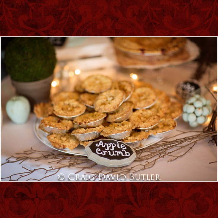 DexterMichigan-Wedding-Photos-CDBStudios-1028