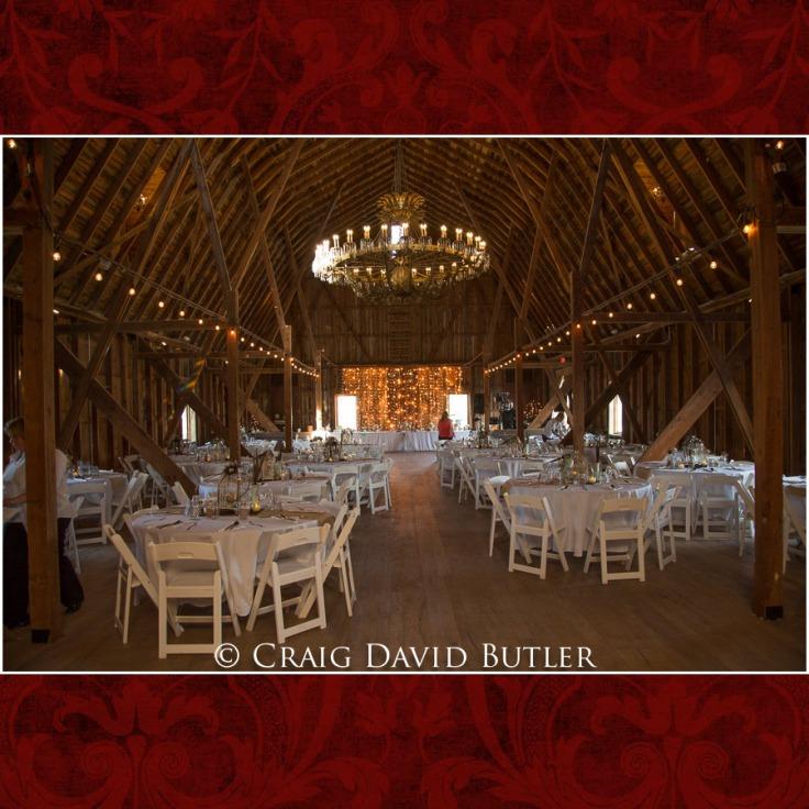 DexterMichigan-Wedding-Photos-CDBStudios-1030