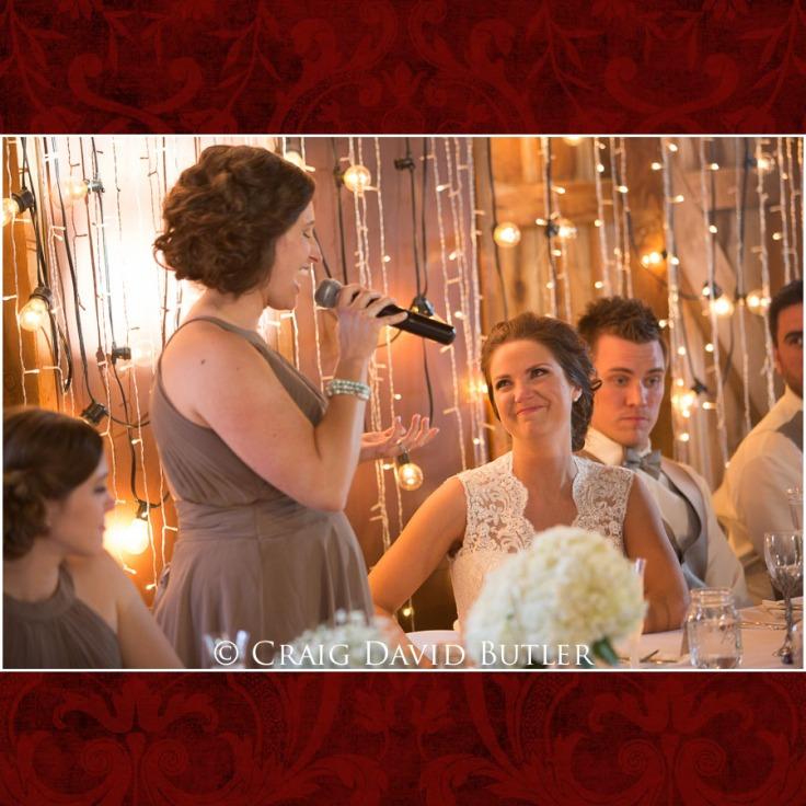 DexterMichigan-Wedding-Photos-CDBStudios-1036