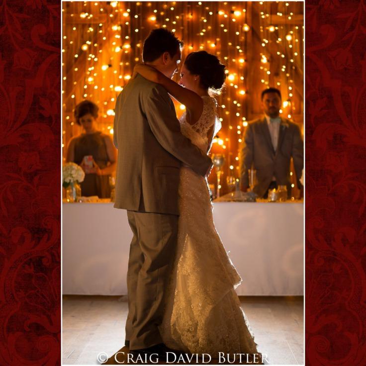 DexterMichigan-Wedding-Photos-CDBStudios-1041