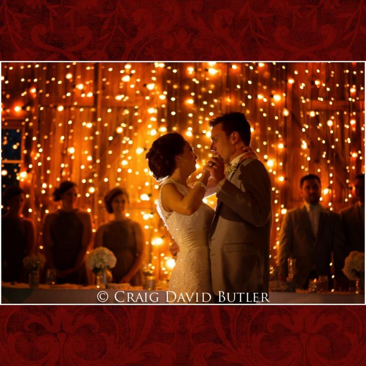 DexterMichigan-Wedding-Photos-CDBStudios-1043