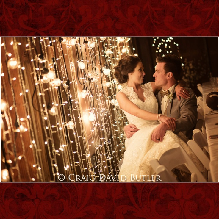 DexterMichigan-Wedding-Photos-CDBStudios-1044