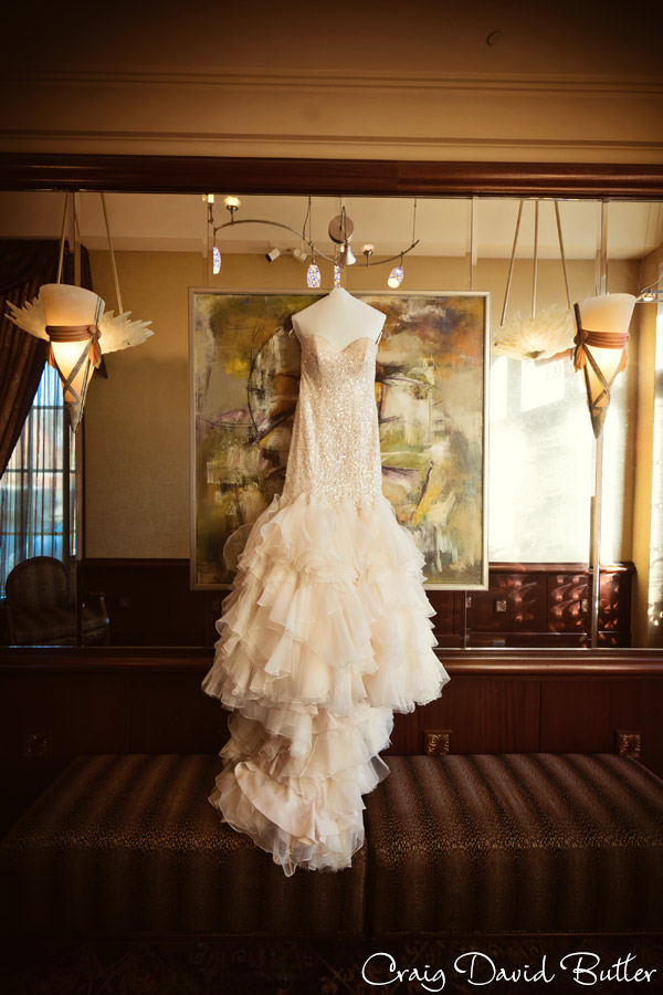 brides gown photo at the reserve.