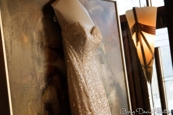 detail photo of the brides gown