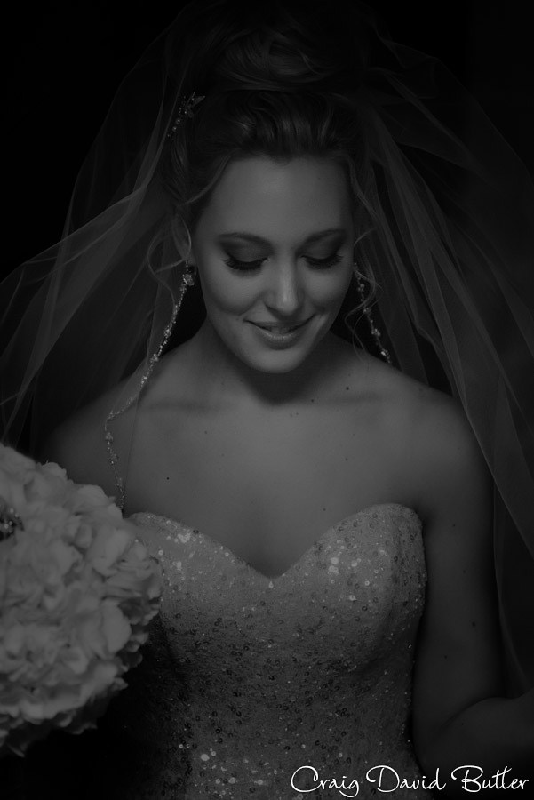 Beautiful photo of the bride on her wedding day