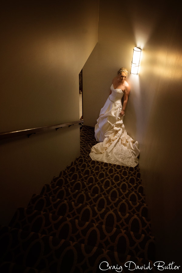 Bride portrait detroit mi