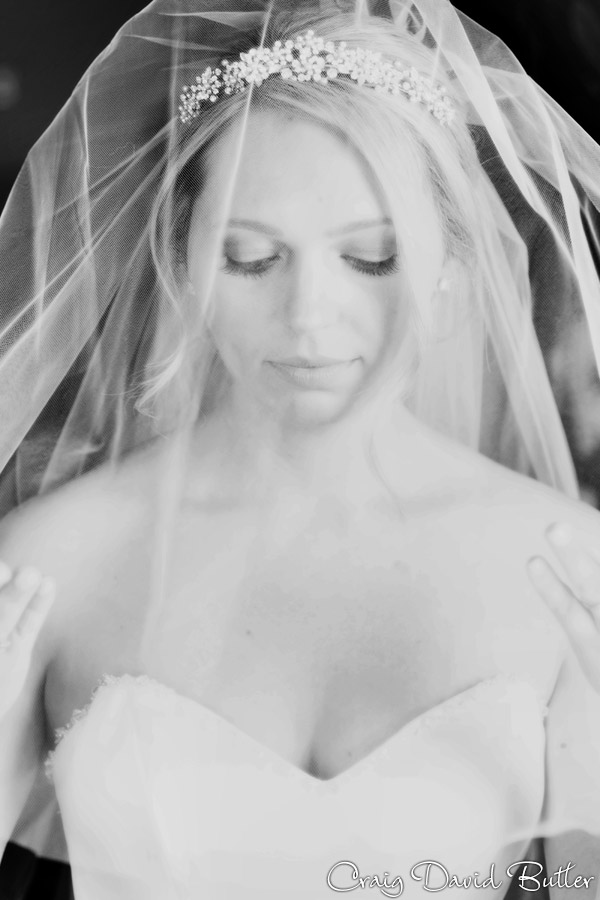 bride portrait using veil