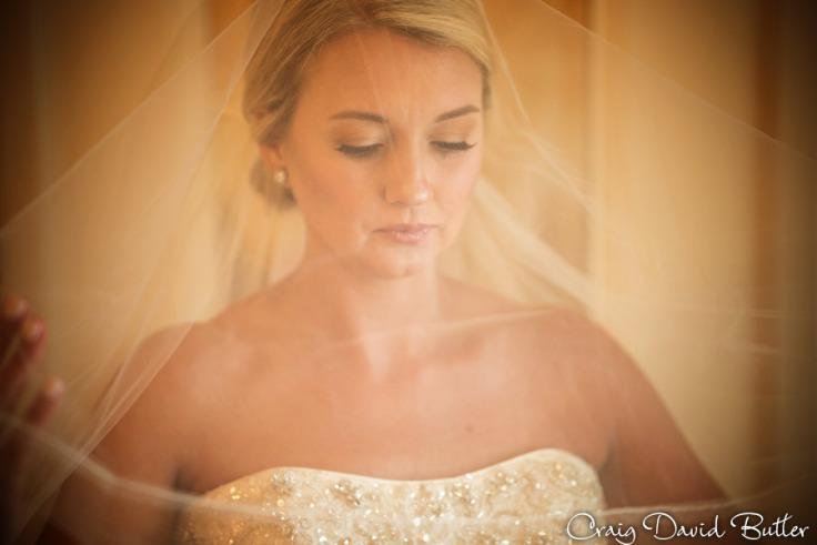bride portrait with veil