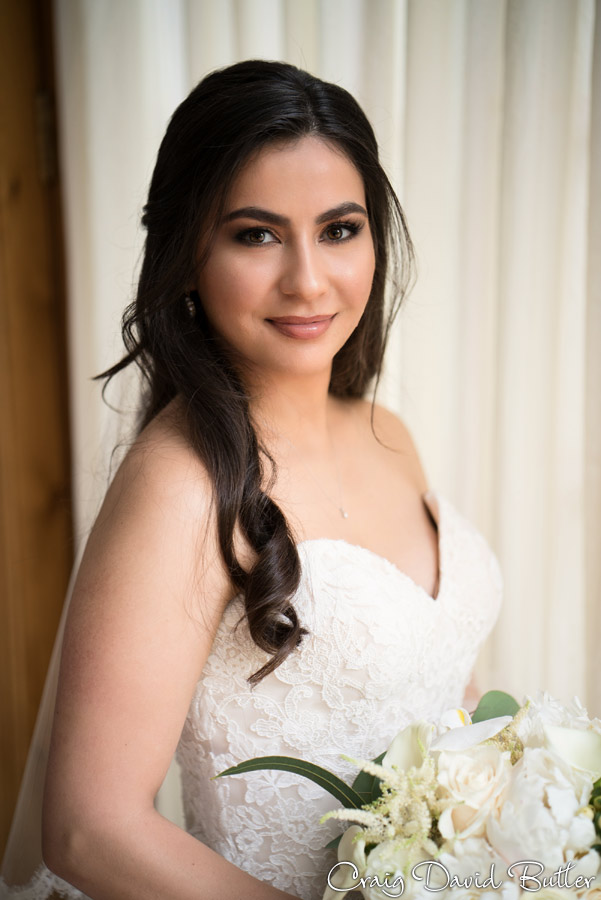 Portrait of the Bride - Farmington Hills Michigan